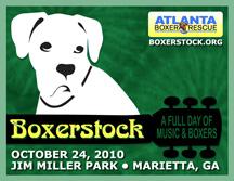 BoxerstockGraphic216